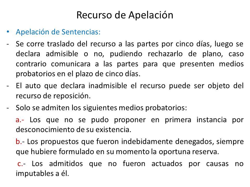 Recurso de Apelación Apelación de Sentencias: -Se corre traslado del recurso a las partes por cinco días, luego se declara admisible o no, pudiendo re