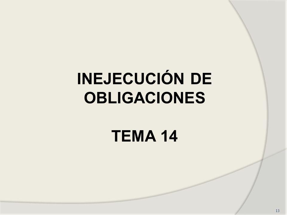 13 INEJECUCIÓN DE OBLIGACIONES TEMA 14