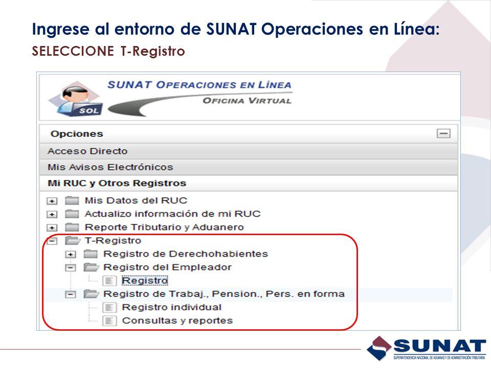 Ingrese al entorno de SUNAT Operaciones en Línea: SELECCIONE T-Registro