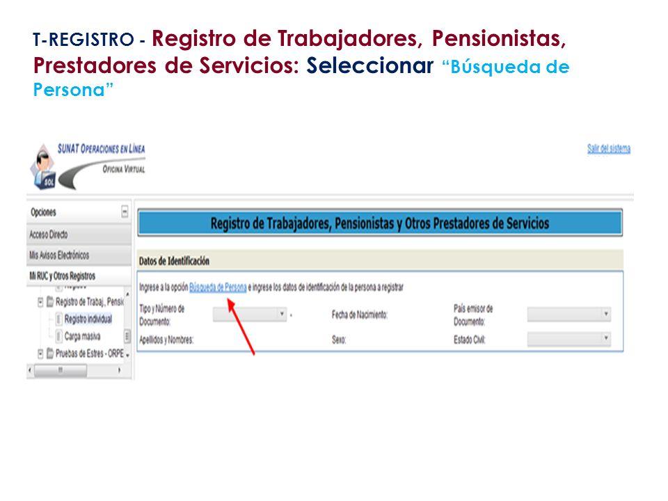 T-REGISTRO - Registro de Trabajadores, Pensionistas, Prestadores de Servicios: Seleccionar Búsqueda de Persona