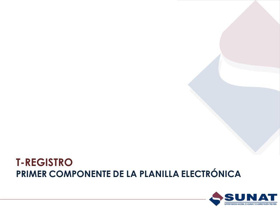 T-REGISTRO PRIMER COMPONENTE DE LA PLANILLA ELECTRÓNICA