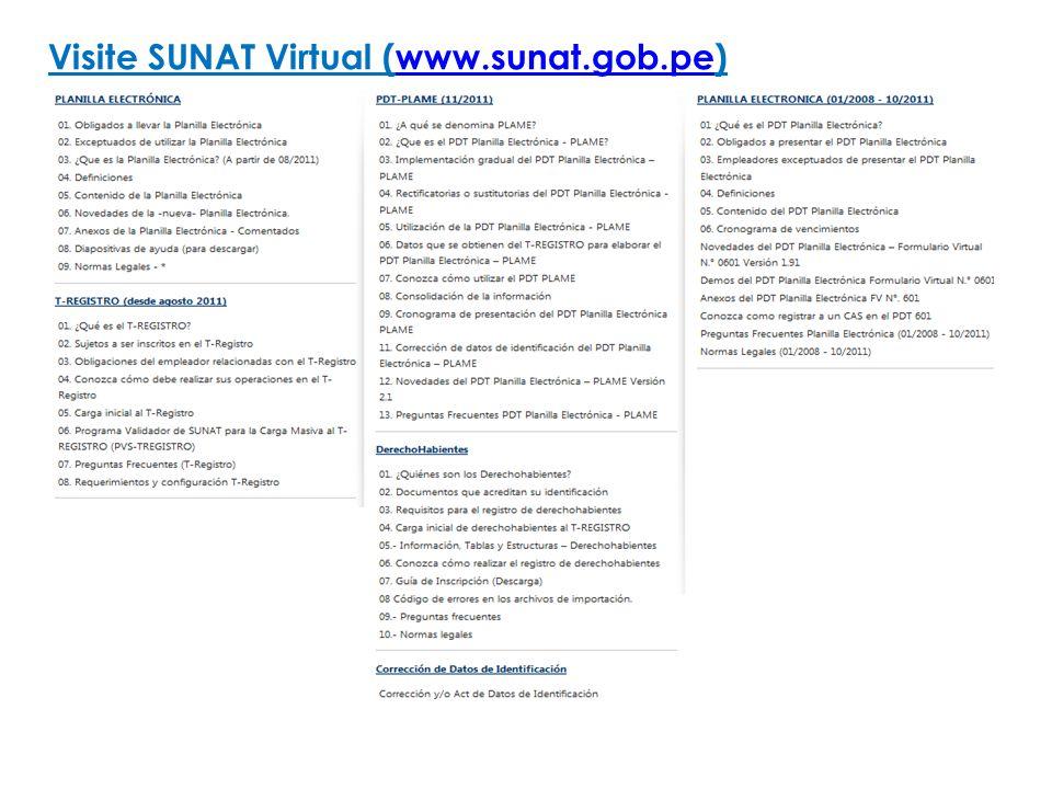 Visite SUNAT Virtual (www.sunat.gob.pe)www.sunat.gob.pe