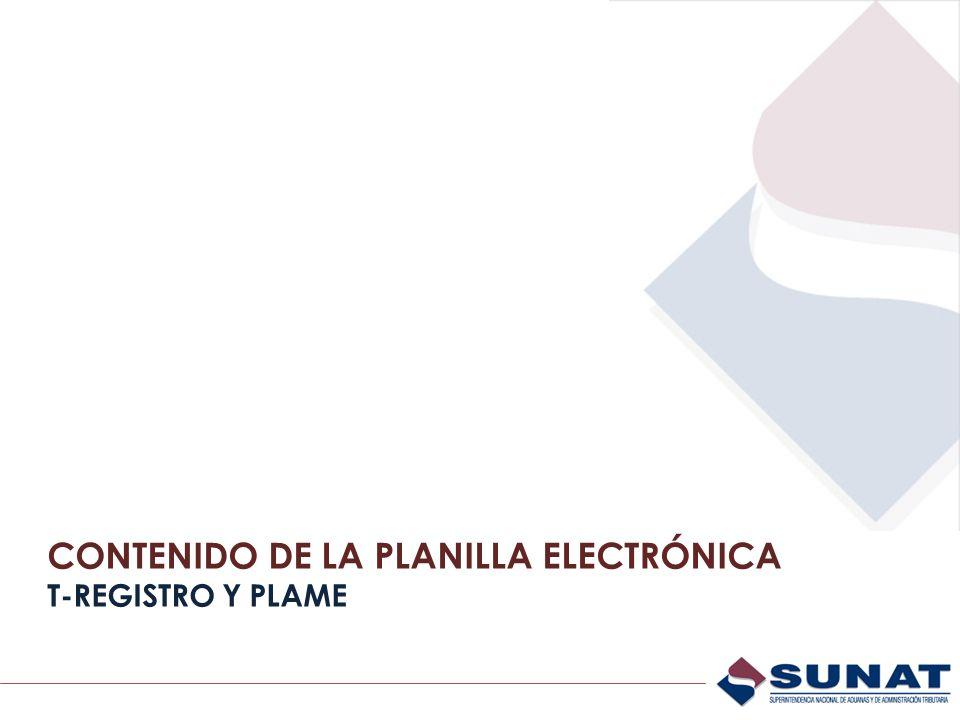 Anexo 1 Aprueba Información de la Planilla Electrónica (T-REGISTRO y PLAME).