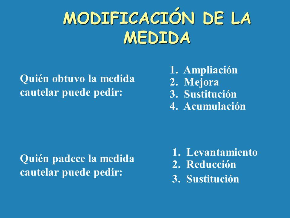 2. Medidas temporales sobre el fondo 3. Medida innovativa 4. Medida de no innovar 5. Medida Genérica - Asignación anticipada de alimentos - Asuntos de