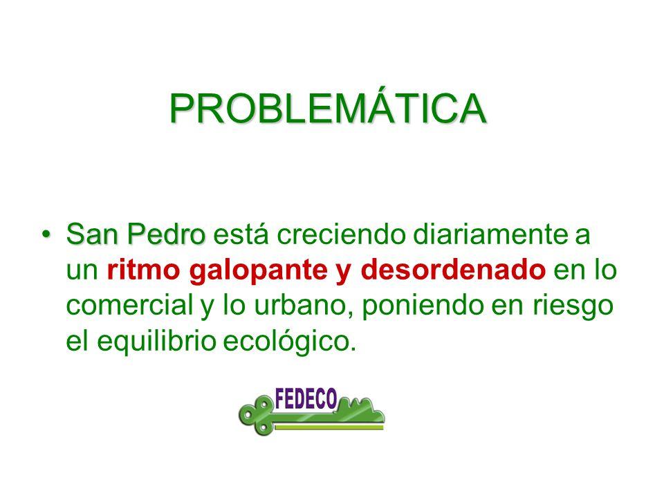 PROBLEMÁTICA San PedroSan Pedro está creciendo diariamente a un ritmo galopante y desordenado en lo comercial y lo urbano, poniendo en riesgo el equilibrio ecológico.