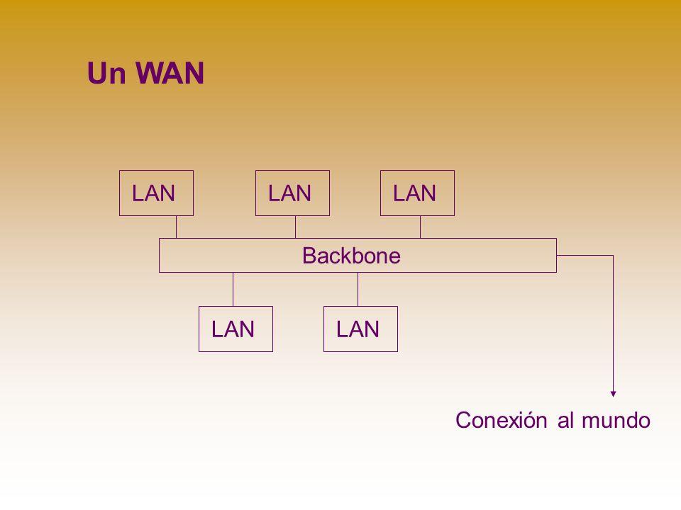 Backbone LAN Un WAN Conexión al mundo