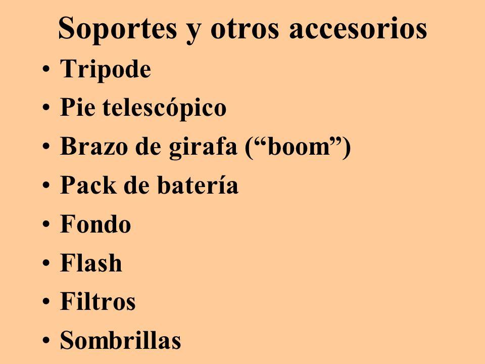 Soportes y otros accesorios Tripode Pie telescópico Brazo de girafa (boom) Pack de batería Fondo Flash Filtros Sombrillas