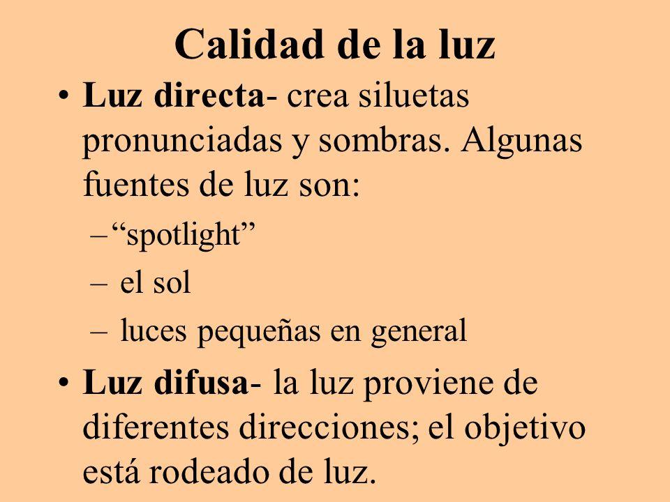 Calidad de la luz Luz directa- crea siluetas pronunciadas y sombras. Algunas fuentes de luz son: –spotlight – el sol – luces pequeñas en general Luz d