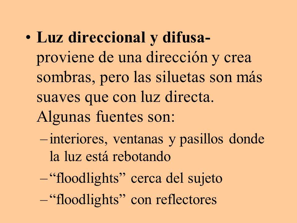 Luz direccional y difusa- proviene de una dirección y crea sombras, pero las siluetas son más suaves que con luz directa. Algunas fuentes son: –interi