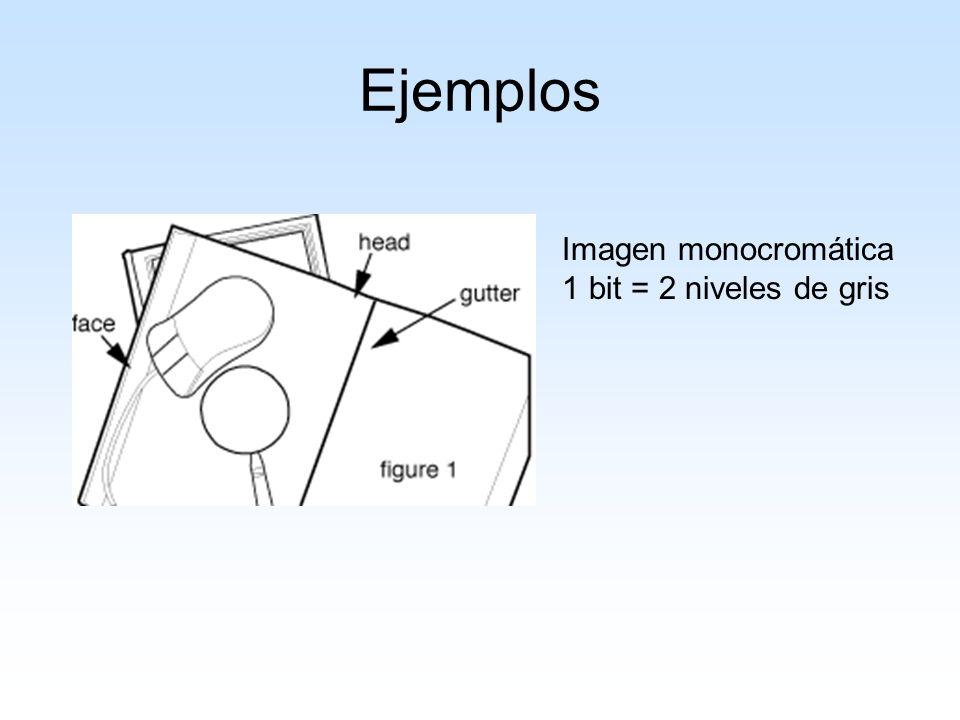 Una imagen en la escala de gris 8 bits = 256 niveles de gris (1 x 8 bits)