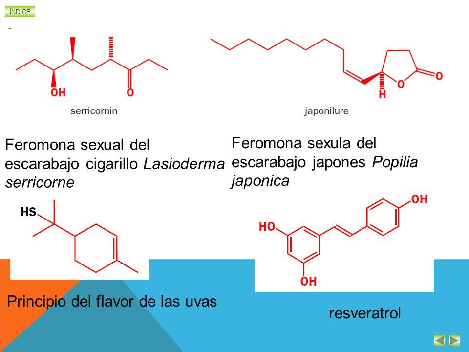ÍNDICE Feromona sexual del escarabajo cigarillo Lasioderma serricorne Feromona sexula del escarabajo japones Popilia japonica Principio del flavor de las uvas resveratrol