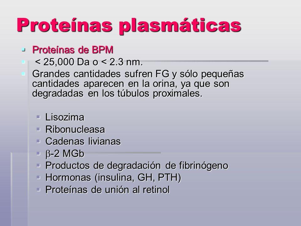Proteínas plasmáticas Proteínas de BPM Proteínas de BPM < 25,000 Da o < 2.3 nm. < 25,000 Da o < 2.3 nm. Grandes cantidades sufren FG y sólo pequeñas c
