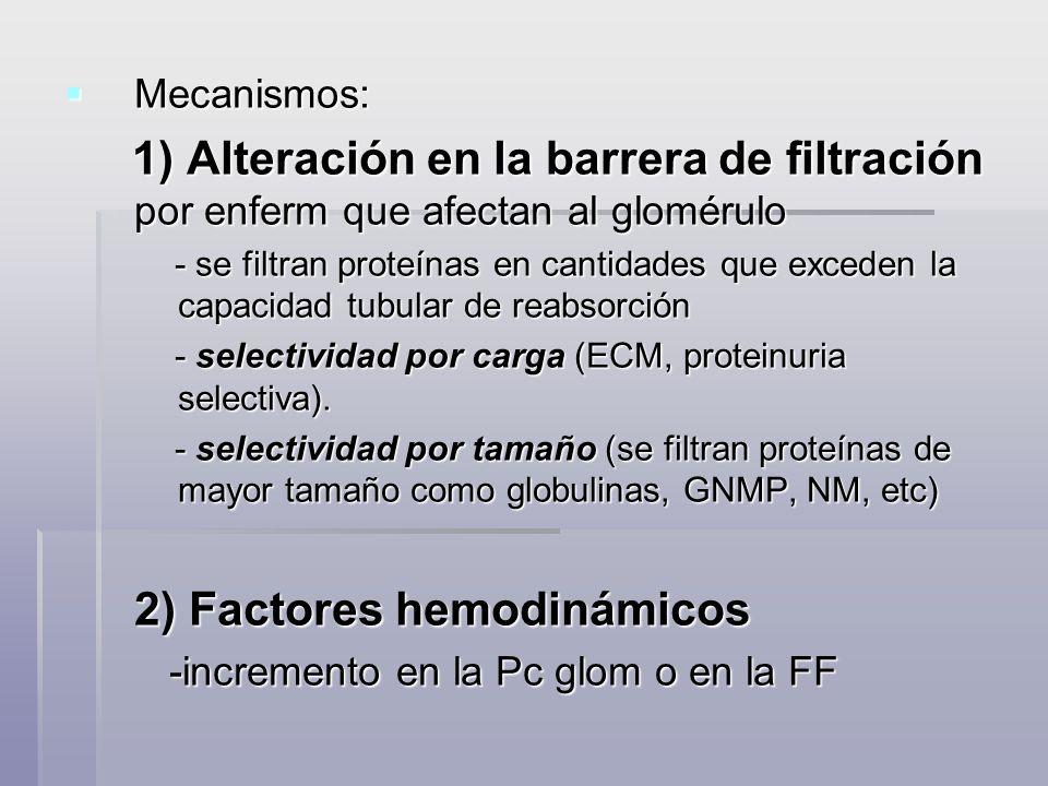 Mecanismos: Mecanismos: 1) Alteración en la barrera de filtración por enferm que afectan al glomérulo 1) Alteración en la barrera de filtración por en