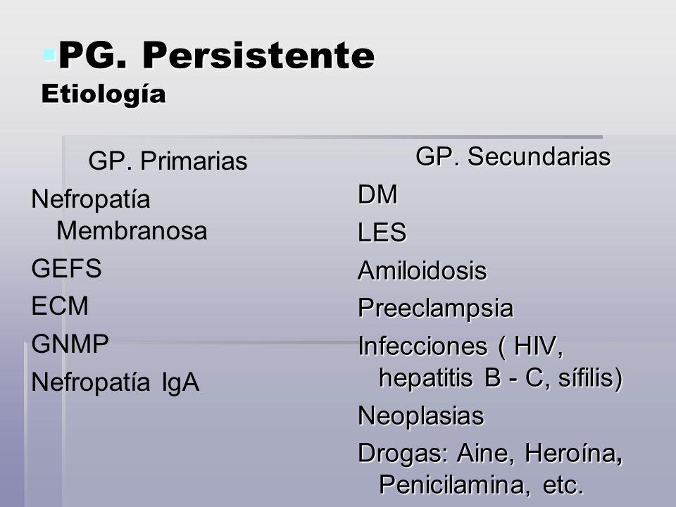 PG. Persistente Etiología PG. Persistente Etiología GP. Primarias Nefropatía Membranosa GEFS ECM GNMP Nefropatía IgA GP. Secundarias DM LES Amiloidosi