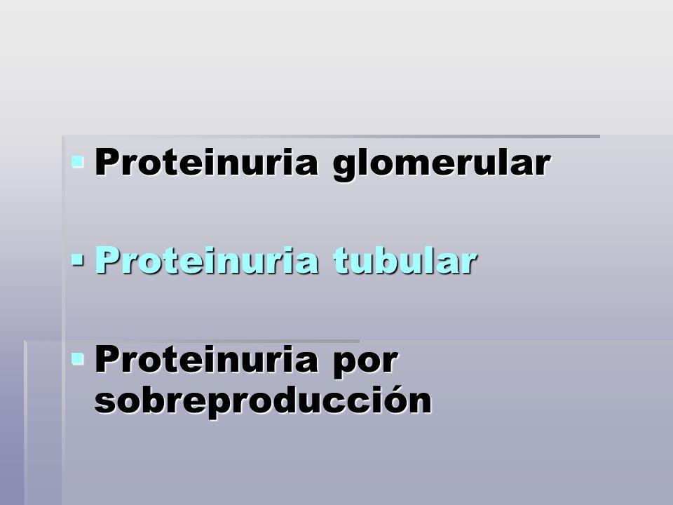 Proteinuria glomerular Proteinuria glomerular Proteinuria tubular Proteinuria tubular Proteinuria por sobreproducción Proteinuria por sobreproducción