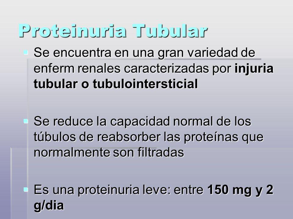 Proteinuria Tubular Se encuentra en una gran variedad de enferm renales caracterizadas por injuria tubular o tubulointersticial Se encuentra en una gr