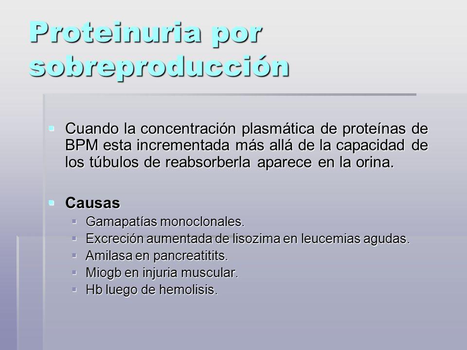 Proteinuria por sobreproducción Cuando la concentración plasmática de proteínas de BPM esta incrementada más allá de la capacidad de los túbulos de re
