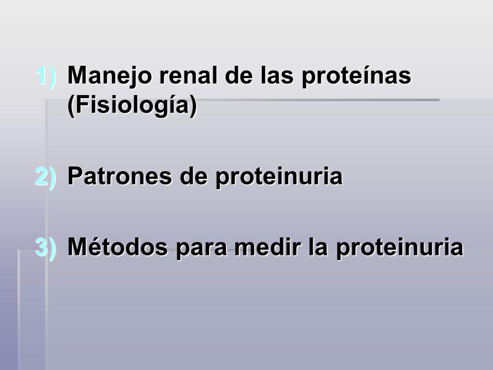 Métodos para medir la proteinuria Semicuantitativos Semicuantitativos Cuantitativos Cuantitativos Cualitativos Cualitativos