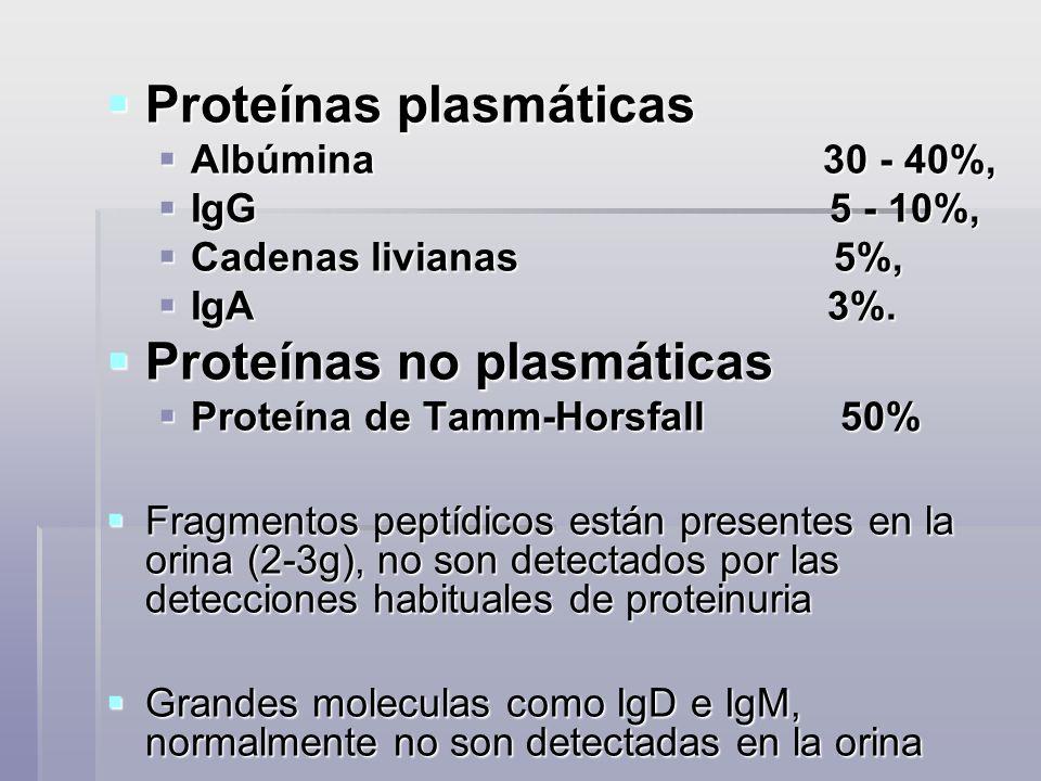Proteínas plasmáticas Proteínas plasmáticas Albúmina 30 - 40%, Albúmina 30 - 40%, IgG 5 - 10%, IgG 5 - 10%, Cadenas livianas 5%, Cadenas livianas 5%,