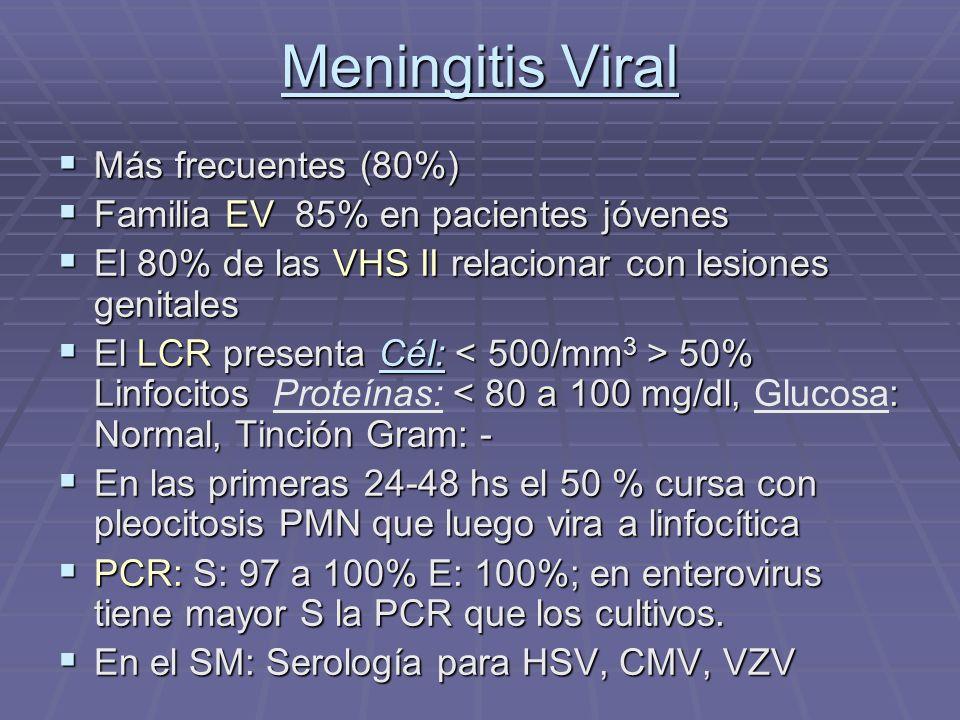 Meningitis Viral Más frecuentes (80%) Más frecuentes (80%) Familia EV 85% en pacientes jóvenes Familia EV 85% en pacientes jóvenes El 80% de las VHS I