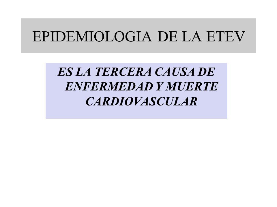 ES LA TERCERA CAUSA DE ENFERMEDAD Y MUERTE CARDIOVASCULAR EPIDEMIOLOGIA DE LA ETEV