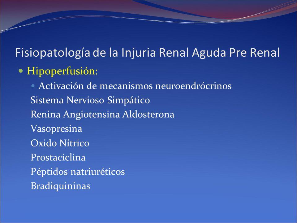 Fisiopatología de la Injuria Renal Aguda Pre Renal Hipoperfusión: Activación de mecanismos neuroendrócrinos Sistema Nervioso Simpático Renina Angioten