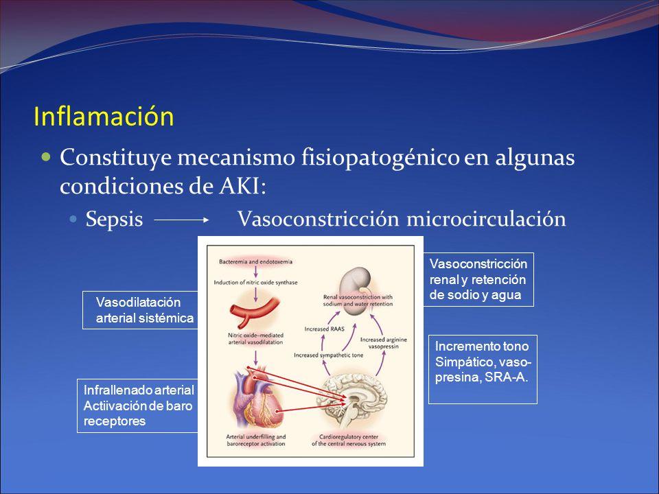 Inflamación Constituye mecanismo fisiopatogénico en algunas condiciones de AKI: SepsisVasoconstricción microcirculación Vasodilatación arterial sistém