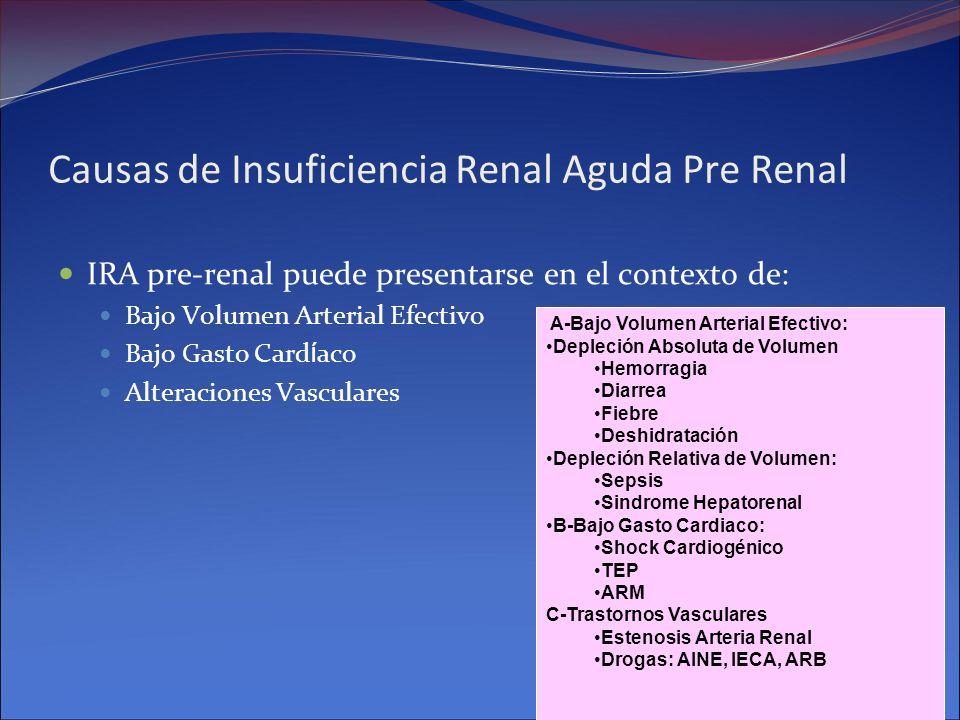 Causas de Insuficiencia Renal Aguda Pre Renal IRA pre-renal puede presentarse en el contexto de: Bajo Volumen Arterial Efectivo Bajo Gasto Card í aco