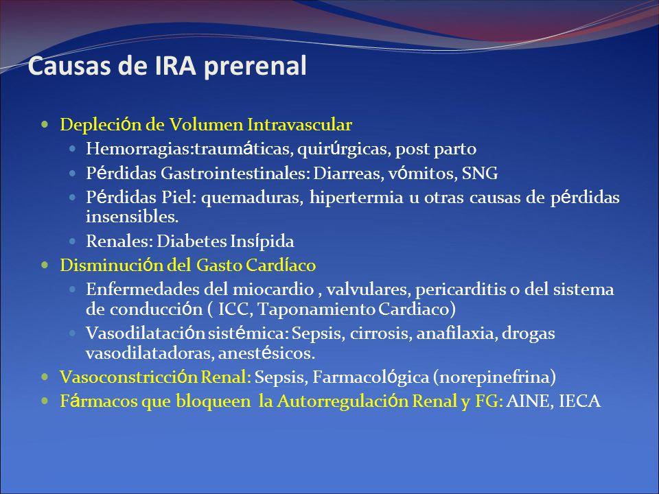 Causas de IRA prerenal Depleci ó n de Volumen Intravascular Hemorragias:traum á ticas, quir ú rgicas, post parto P é rdidas Gastrointestinales: Diarre