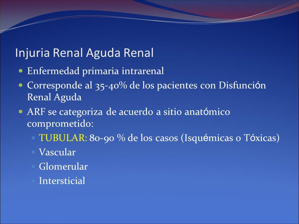Injuria Renal Aguda Renal Enfermedad primaria intrarenal Corresponde al 35-40% de los pacientes con Disfunci ó n Renal Aguda ARF se categoriza de acue