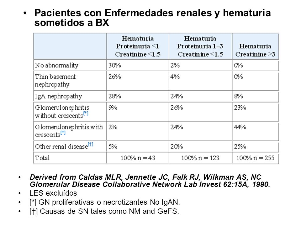Derived from Caldas MLR, Jennette JC, Falk RJ, Wilkman AS, NC Glomerular Disease Collaborative Network Lab Invest 62:15A, 1990. LES excluídos [*] GN p