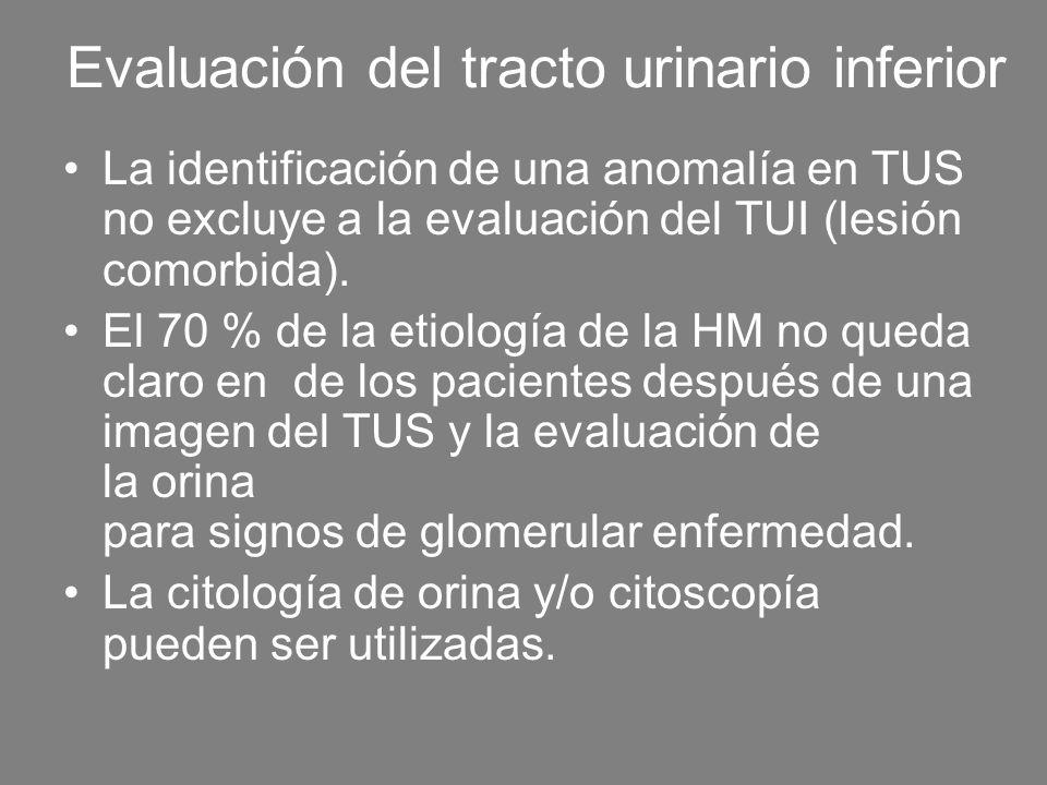 Evaluación del tracto urinario inferior La identificación de una anomalía en TUS no excluye a la evaluación del TUI (lesión comorbida). El 70 % de la