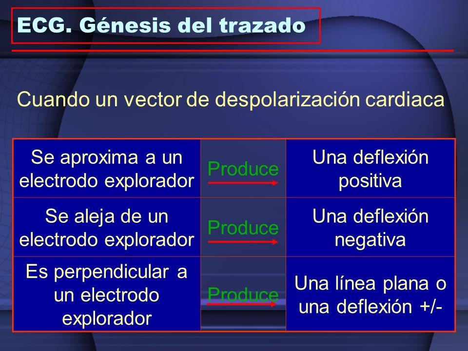 Cuando un vector de despolarización cardiaca Se aproxima a un electrodo explorador Produce Una deflexión positiva Se aleja de un electrodo explorador
