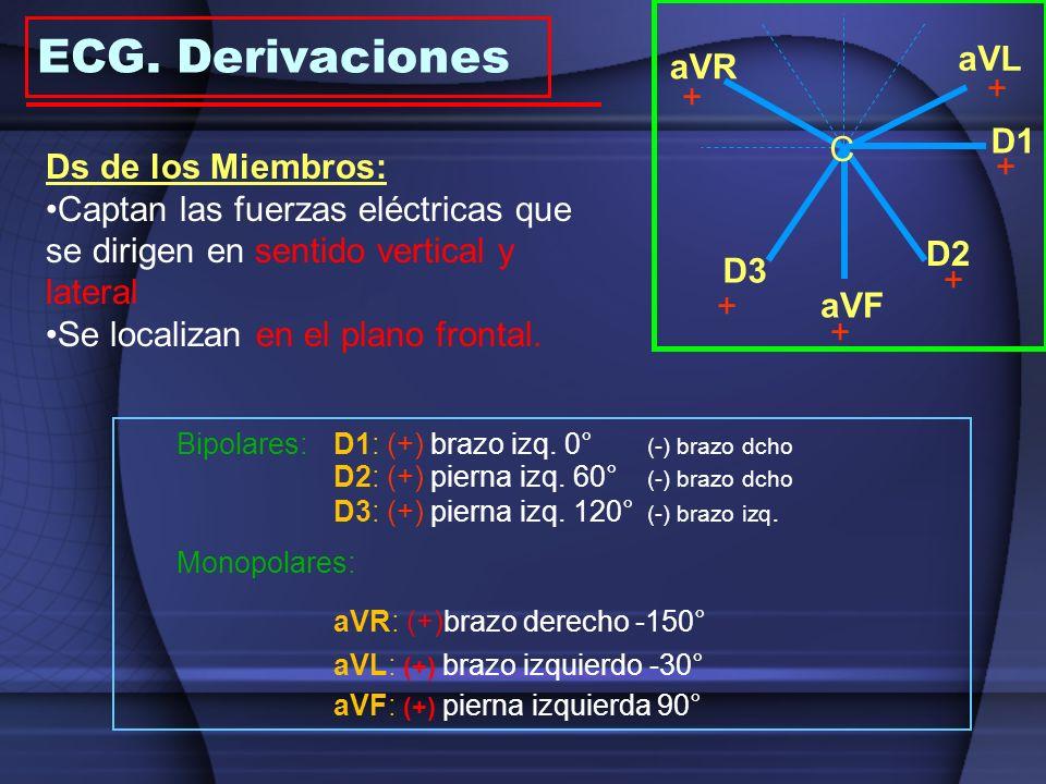 Onda P Segmento PR Onda Q Onda R Onda S Segmento ST Onda T Onda U Intervalo QT Intervalo PR QRS 1 mm = 0´1 mV 1 mm = 0´04 seg Ondas o Complejos: +, - y DifasicosOndas o Complejos: +, - y Difasicos Isoeléctrica: No existe act electrica: Segm T-PIsoeléctrica: No existe act electrica: Segm T-P Intervalos:Intervalos: Incluyen ondas o complejosIncluyen ondas o complejos Segmentos:Segmentos: No incluyen ni ondas ni complejosNo incluyen ni ondas ni complejos