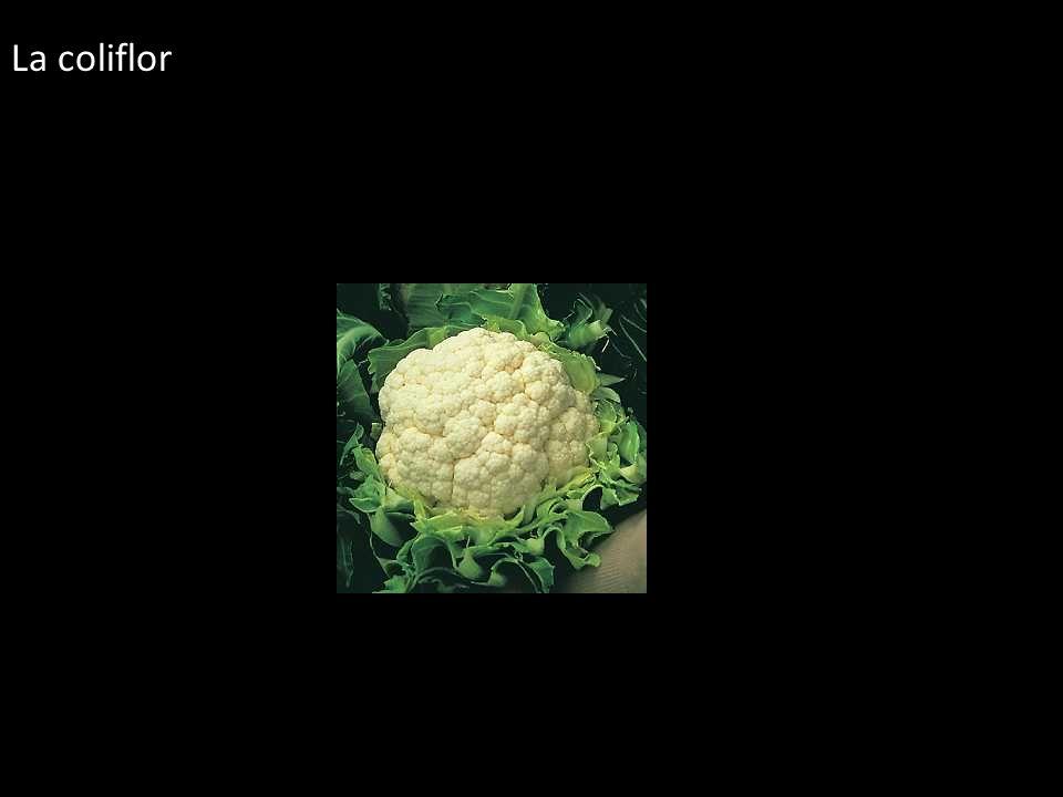La coliflor