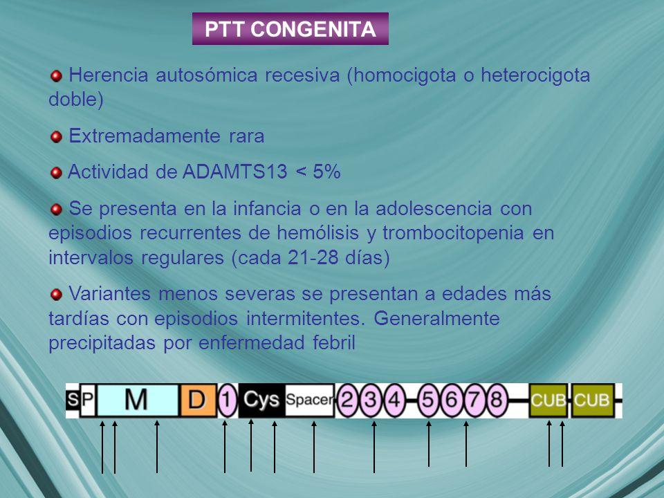 PTT CONGENITA Herencia autosómica recesiva (homocigota o heterocigota doble) Extremadamente rara Actividad de ADAMTS13 < 5% Se presenta en la infancia o en la adolescencia con episodios recurrentes de hemólisis y trombocitopenia en intervalos regulares (cada 21-28 días) Variantes menos severas se presentan a edades más tardías con episodios intermitentes.