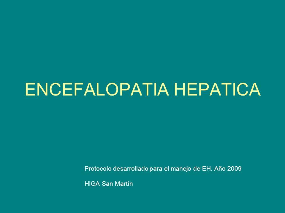 ENCEFALOPATIA HEPATICA Protocolo desarrollado para el manejo de EH. Año 2009 HIGA San Martín