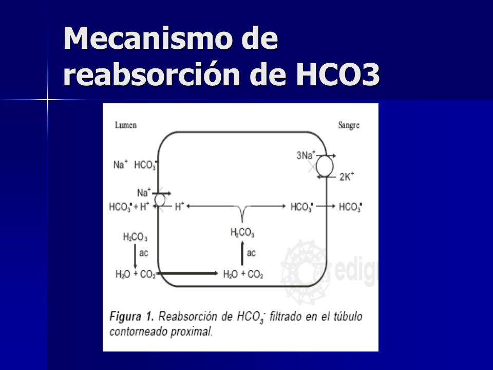 Excreción renal de H + Dieta normal de adulto genera entre 50-100 mEq/día, los cuales se excretan por orina para mantener el EAB. Dieta normal de adul