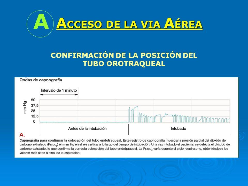 A CCESO DE LA VIA A ÉREA A CONFIRMACIÓN DE LA POSICIÓN DEL TUBO OROTRAQUEAL