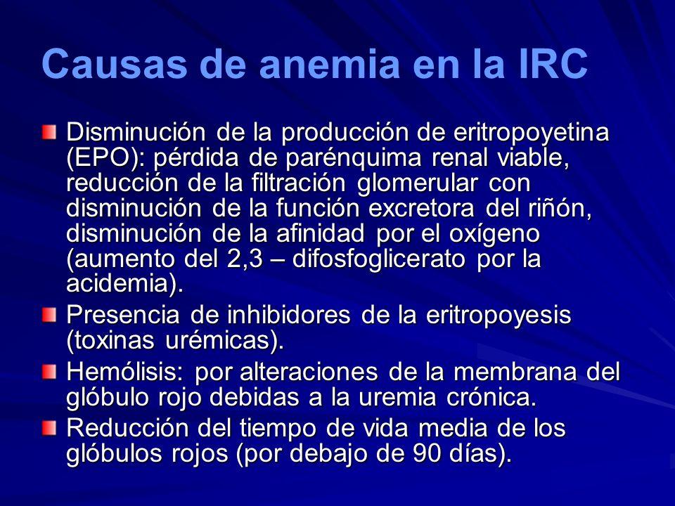 Causas de anemia en la IRC Disminución de la producción de eritropoyetina (EPO): pérdida de parénquima renal viable, reducción de la filtración glomer