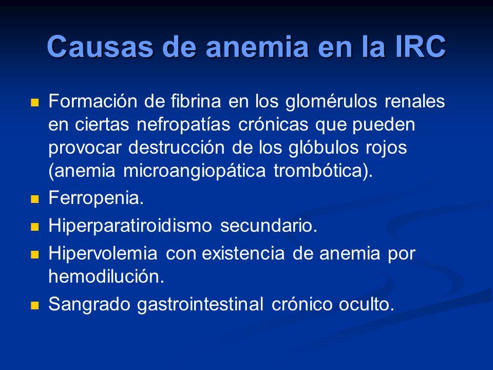 Causas de anemia en la IRC Formación de fibrina en los glomérulos renales en ciertas nefropatías crónicas que pueden provocar destrucción de los glóbu