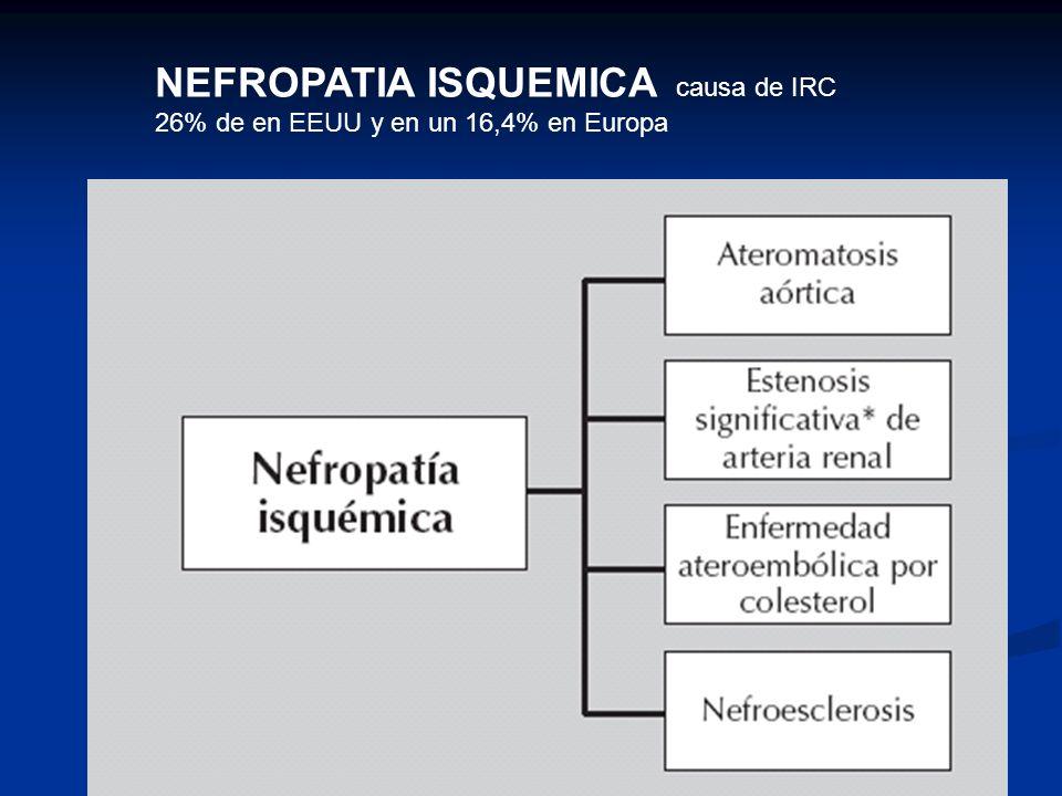 NEFROPATIA ISQUEMICA causa de IRC 26% de en EEUU y en un 16,4% en Europa
