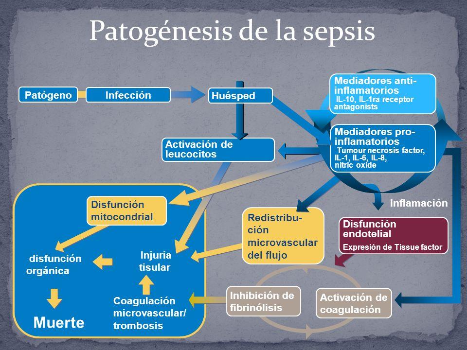 Patogénesis de la sepsis Injuria tisular Coagulación microvascular/ trombosis disfunción orgánica Muerte Disfunción mitocondrial Activación de coagula