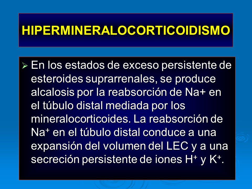 HIPERMINERALOCORTICOIDISMO En los estados de exceso persistente de esteroides suprarrenales, se produce alcalosis por la reabsorción de Na+ en el túbu