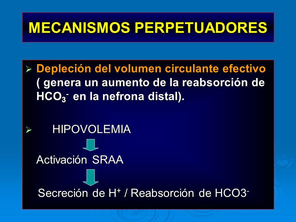 MECANISMOS PERPETUADORES Depleción del volumen circulante efectivo ( genera un aumento de la reabsorción de HCO 3 - en la nefrona distal). Depleción d