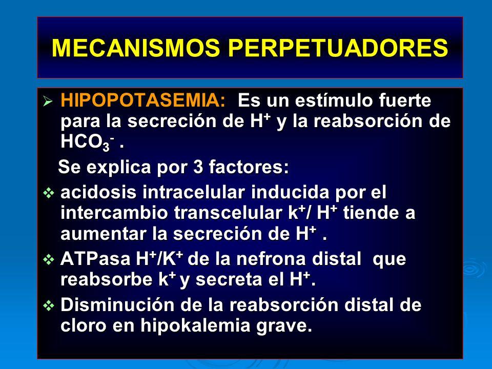 HIPOPOTASEMIA: Es un estímulo fuerte para la secreción de H + y la reabsorción de HCO 3 -. HIPOPOTASEMIA: Es un estímulo fuerte para la secreción de H