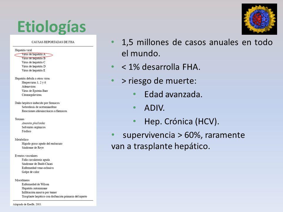 1,5 millones de casos anuales en todo el mundo. < 1% desarrolla FHA. > riesgo de muerte: Edad avanzada. ADIV. Hep. Crónica (HCV). supervivencia > 60%,