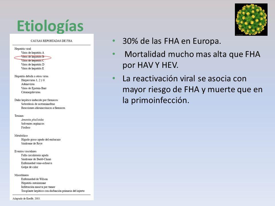 Etiologías 30% de las FHA en Europa. Mortalidad mucho mas alta que FHA por HAV Y HEV. La reactivación viral se asocia con mayor riesgo de FHA y muerte