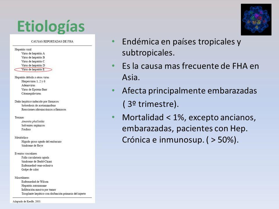 Etiologías Endémica en países tropicales y subtropicales. Es la causa mas frecuente de FHA en Asia. Afecta principalmente embarazadas ( 3º trimestre).