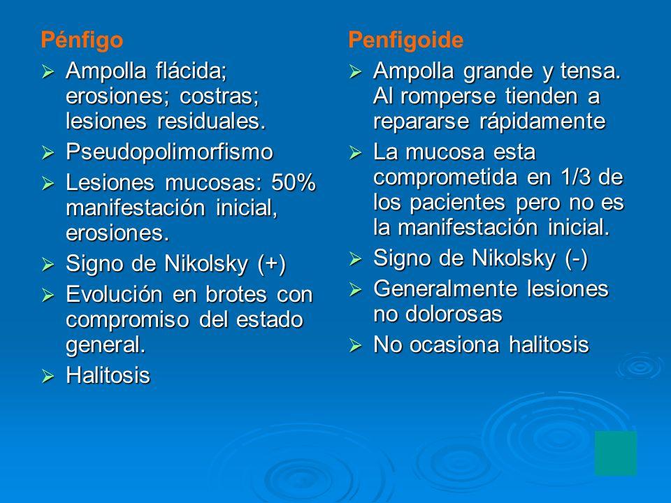 Pénfigo Ampolla flácida; erosiones; costras; lesiones residuales. Ampolla flácida; erosiones; costras; lesiones residuales. Pseudopolimorfismo Pseudop